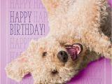 Labradoodle Birthday Card Birthday Labradoodle Google Zoeken More Kaarten