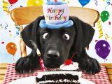 Labrador Birthday Cards Black Labrador Birthday Card for Me Funny Dog Birthday