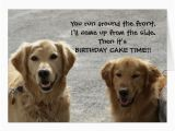 Labrador Birthday Cards Golden Lab Friends Birthday Card Zazzle Com