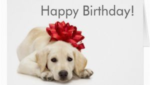 Labrador Birthday Cards Labrador Retriever Happy Birthday Card Zazzle