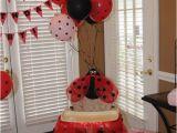 Ladybug 1st Birthday Decorations 17 Best Images About 1st Birthday Ladybug Cake Skirts