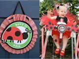 Ladybug 1st Birthday Decorations 1st Birthday Party Ladybug Picnic theme Cakes Likes A