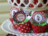 Ladybug 1st Birthday Decorations A Little Loveliness Ladybug First Birthday Party