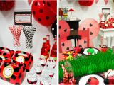 Ladybug Birthday Decorations Ideas Diy Ladybug Party Birthday Express