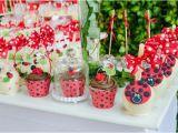 Ladybug Birthday Decorations Ideas Kara 39 S Party Ideas Ladybug themed Birthday Party