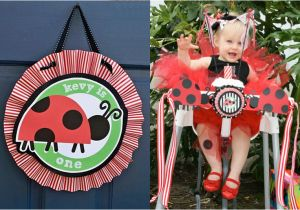 Ladybug First Birthday Decorations 1st Party Picnic Theme Cakes Likes A