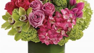 Latest Birthday Flowers Shop Winnipeg Birthday Flowers On Our New Online
