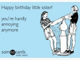 Little Sister Birthday Meme 19 Very Funny Sis Birthday Meme Images and Pictures Memesboy