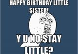 Little Sister Birthday Memes 40 Birthday Memes for Sister Wishesgreeting