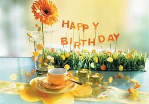 Male Birthday Flowers Birthday Flowers Fleurs Damour