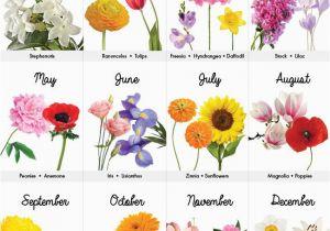 2d2b75d8a Monthly Birthday Flowers Best 25 Birth Flower Tattoos Ideas On Pinterest