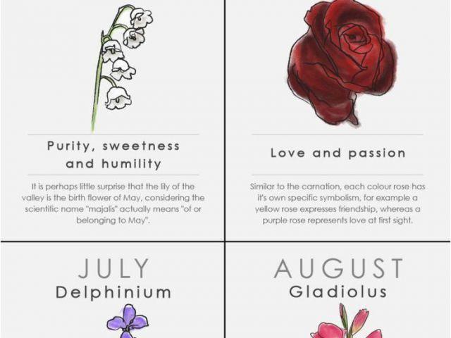 020ce7fb1 Monthly Birthday Flowers Best 25 February Birth Flowers Ideas On ...