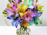 Moonpig Birthday Flowers 30 Best Images About Fabulous Florals On Pinterest Next