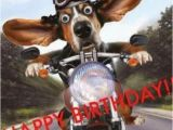 Motorcycle Birthday Meme 15 top Happy Birthday Motorcycle Meme Jokes Quotesbae