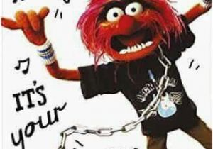 Muppets Happy Birthday Meme 25 Best Ideas About Happy Birthday Wishes On Pinterest