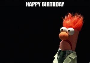 Muppets Happy Birthday Meme Happy Birthday