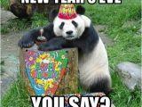 New Years Eve Birthday Meme New Year 39 S Eve You Say Happy Birthday Panda Meme