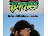 Ninja Turtle Birthday Meme Ninja Turtle Memes Image Memes at Relatably Com