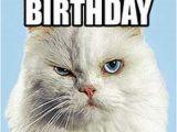 Nurse Birthday Meme Happy Birthday