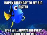 Older Sister Birthday Meme Happy Birthday Sister Meme Happy Birthday
