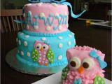 Owl 1st Birthday Decorations 17 Best Images About Kyleighs First Birthday On