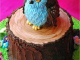 Owl Birthday Cake Decorations Owl Cake Cakecentral Com