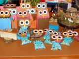Owl Decorations for Birthday Owl Birthday Party Decoration Criolla Brithday Wedding