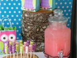 Owl Decorations for Birthday Party Best 25 Owl Party Decorations Ideas On Pinterest Owl