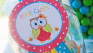 Owl First Birthday Decorations Kara 39 S Party Ideas Aloha Owl 1st Birthday Party Via Kara