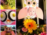 Owl First Birthday Decorations Owl themed First Birthday Diy Inspired