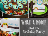 Owl themed Birthday Party Decorations Owl 1st Birthday Party Mostly Homemade Mom