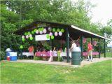Park Birthday Party Decorations 17 Best Images About Park Shelter or Pavillion Decorations