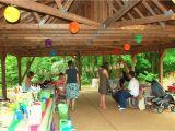 Park Birthday Party Decorations Birthday Party Ideas Birthday Party Ideas at the Park