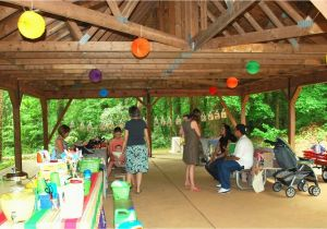 Park Birthday Party Decorations Ideas At The
