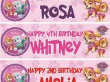 Personalised Happy Birthday Banners Uk 2 X Personalised Birthday Banner Party Paw Patrol Girls