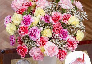 Pic Of Birthday Flowers Birthday Flower Gift Birthday Flowers Gifts Uk Bunches