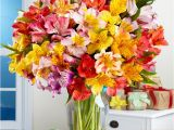 Pics Of Birthday Flowers Happy Birthday Flowers Best Gifts for You Birthday Cakes