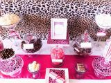 Pink Cheetah Print Birthday Decorations Animal Print Party Decorations Ideas Psoriasisguru Com