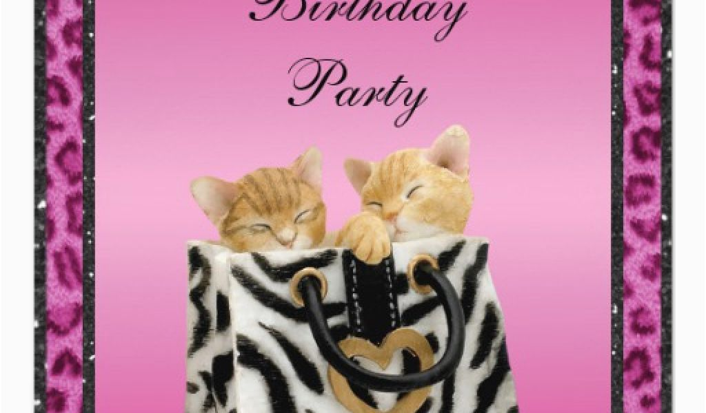 Pink Cheetah Print Birthday Decorations Kittens Leopard