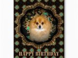 Pomeranian Birthday Card 54 Best Images About My Greeting Card Art On Pinterest