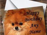 Pomeranian Birthday Card Pomeranian Puppy Dog Personalised Birthday Card the Card Zoo