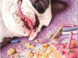 Pretty Birthday Memes Happy Birthday Meme Cute Celebrations Pinterest