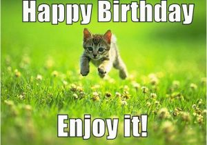 Pretty Happy Birthday Memes the Birthday Thread Bioware social Network Fan forums
