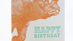 Rhino Birthday Card Rhino Birthday Card Sent Well