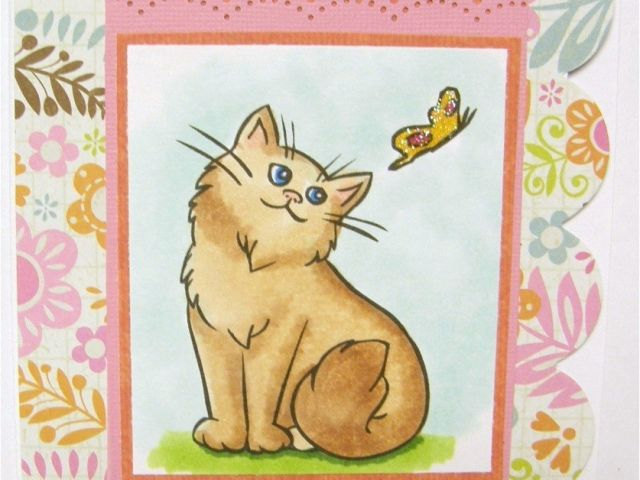 Send Birthday Card Free Ecards Beautiful Cat E