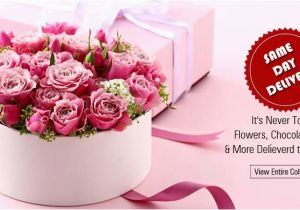 Send Birthday Flowers Same Day Read Blog On Shower Your Love by Sending Gifts N Flowers
