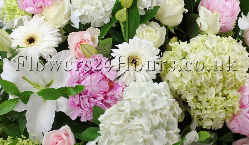 Download By SizeHandphone Tablet Desktop Original Size Back To Send Birthday Flowers Same Day