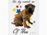 Shar Pei Birthday Card Birthday Card with Cute Shar Pei Humourous Card Zazzle