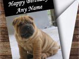 Shar Pei Birthday Card Cute Shar Pei Dog Personalised Birthday Card the Card Zoo