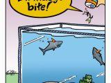 Shark Tank Birthday Cards Happy Birthday Chum Nobrow Cartoons